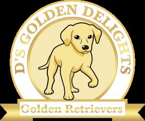 Golden Retriever Breeder Maryland